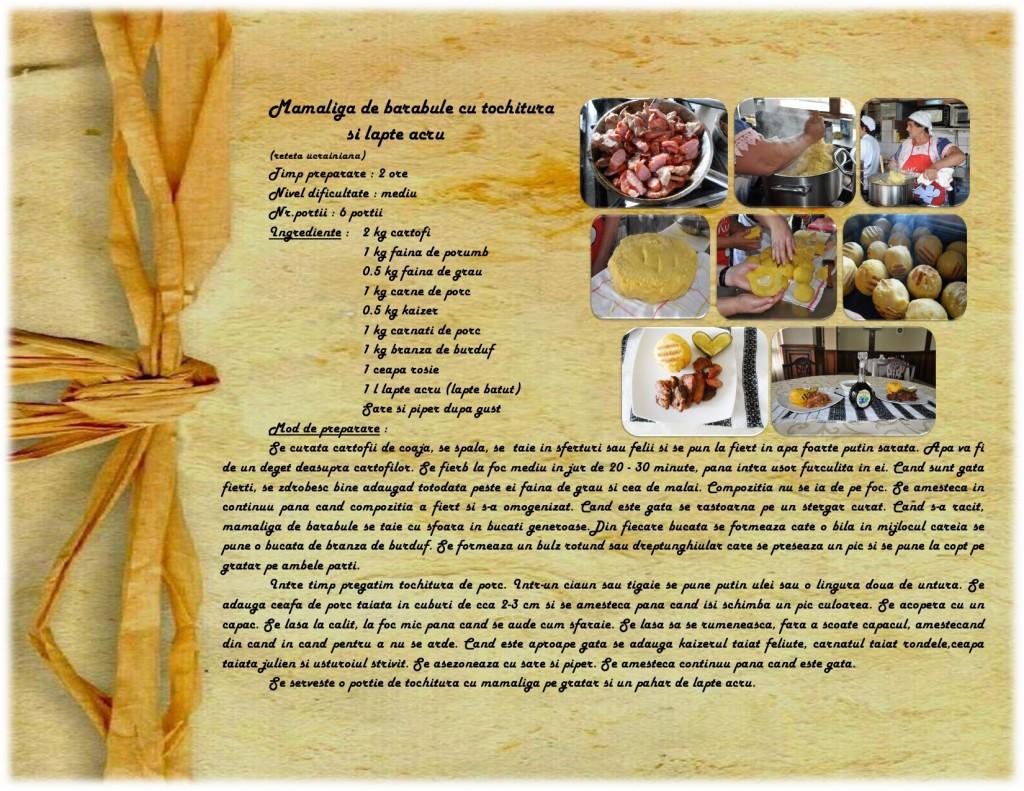 115-tochitura-cu-bulz-de-mamaliga-page0001